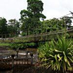 Paronella Park Hängebrücke