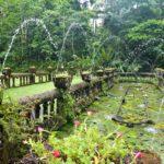 Paronella Park Garten