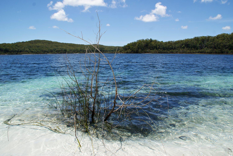 Australien Lake McKenzie Fraser Island