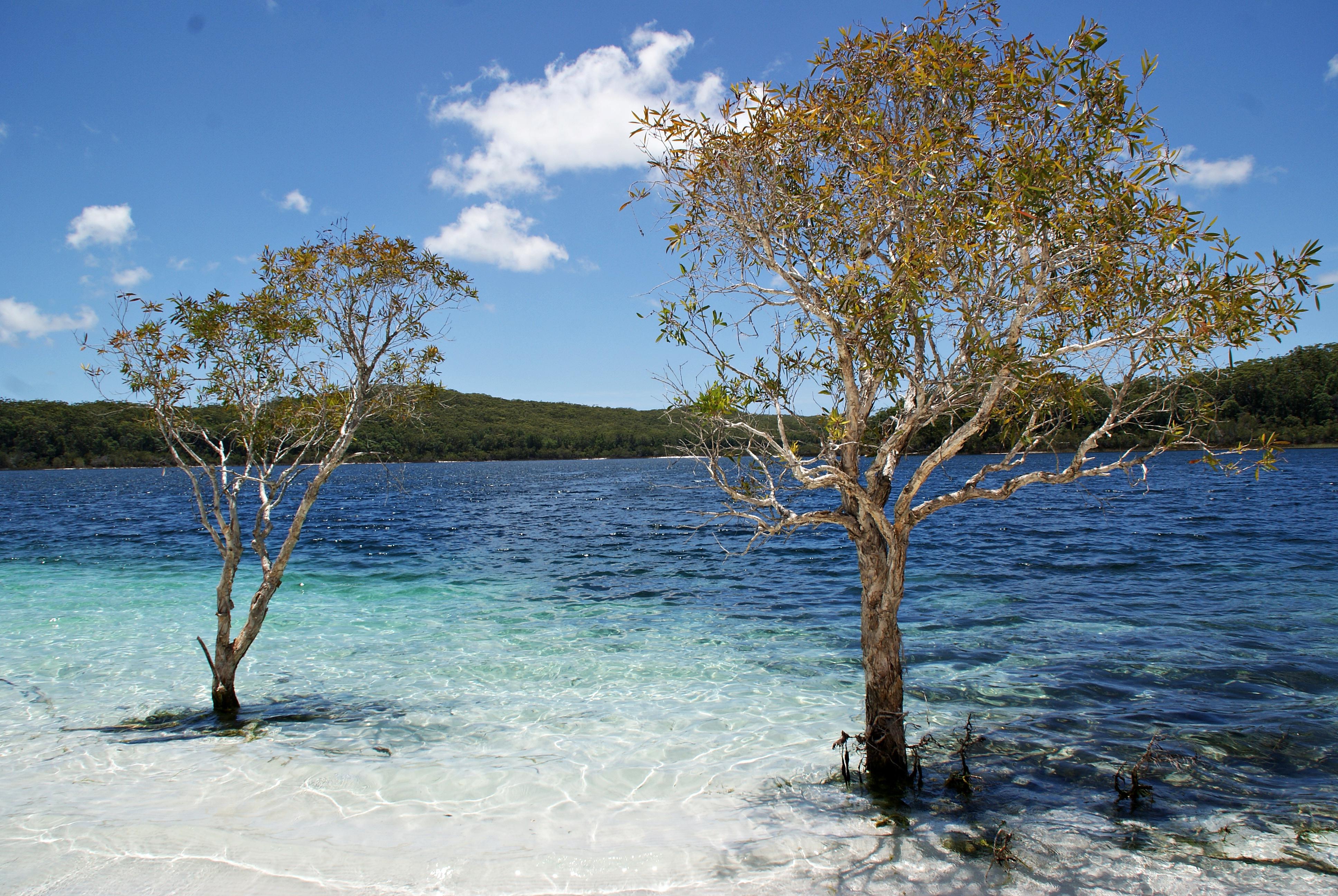 Australien Fraser Island Lake McKenzie
