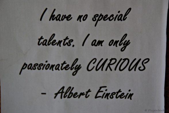 Albert Einstein im Curious Corner