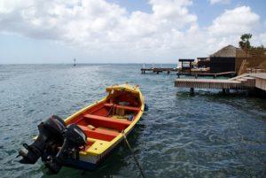 Zeerover Aruba