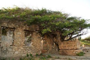 Balashi Goldmine Aruba