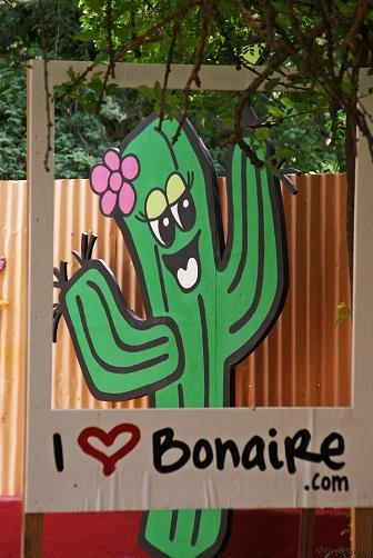 Bonaire Kaktuslikör