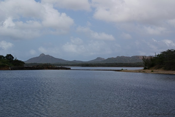 Bonaire Goto Meer