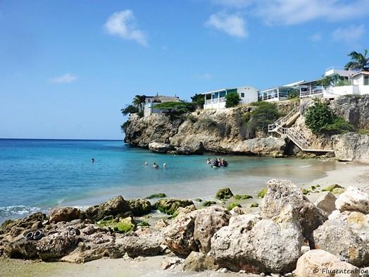 Curacao Schnorcheln Playa Grandi Meeresschildkroeten
