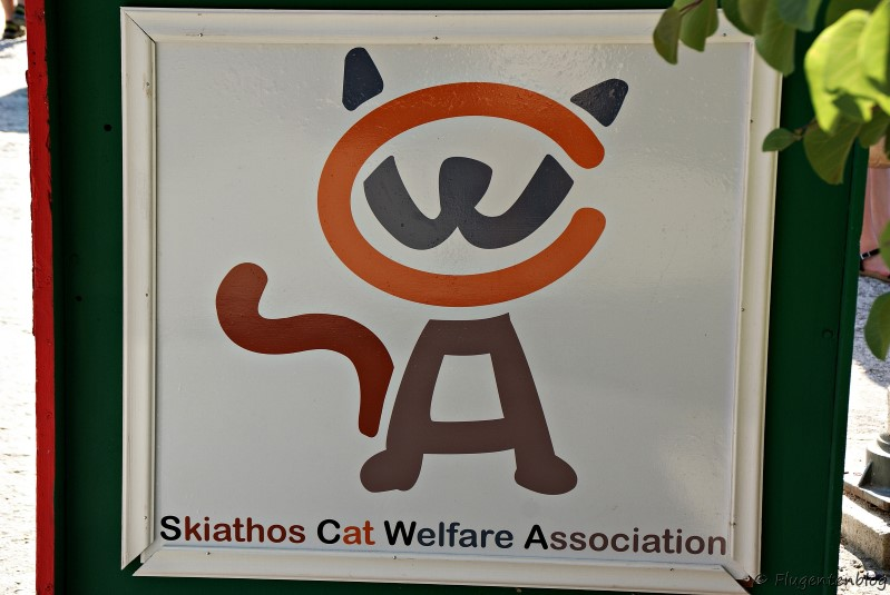 Skiathos Cat Welfare Association