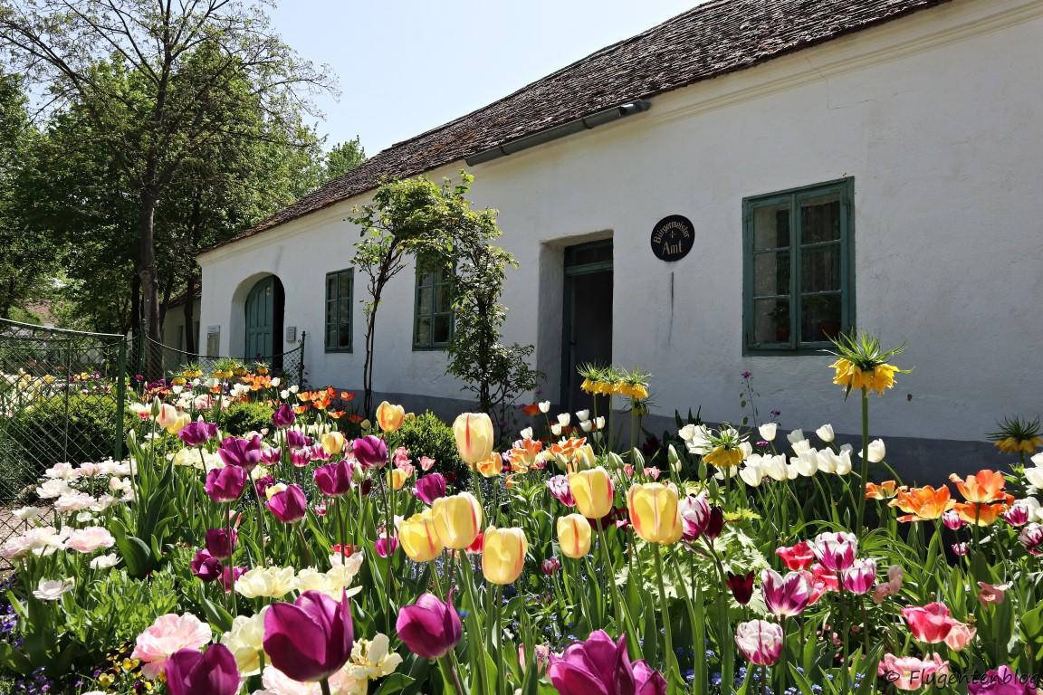 Museumsfruehling Niederoesterreich Weinviertel