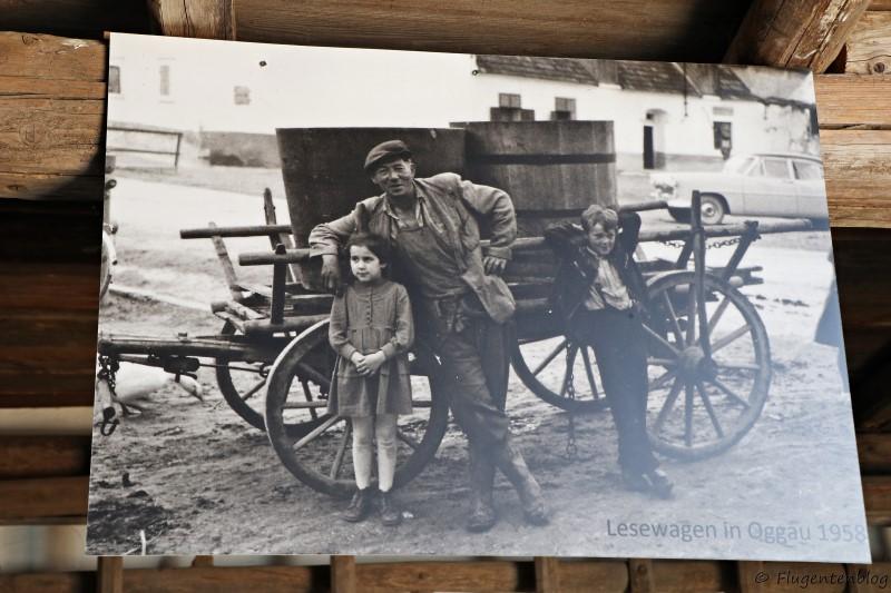 Dorfmuseum Moenchhof Wagen fuer die Weinlese