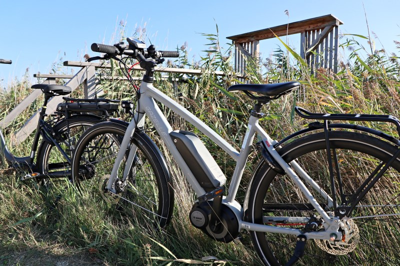 Neusiedler See Radfahren