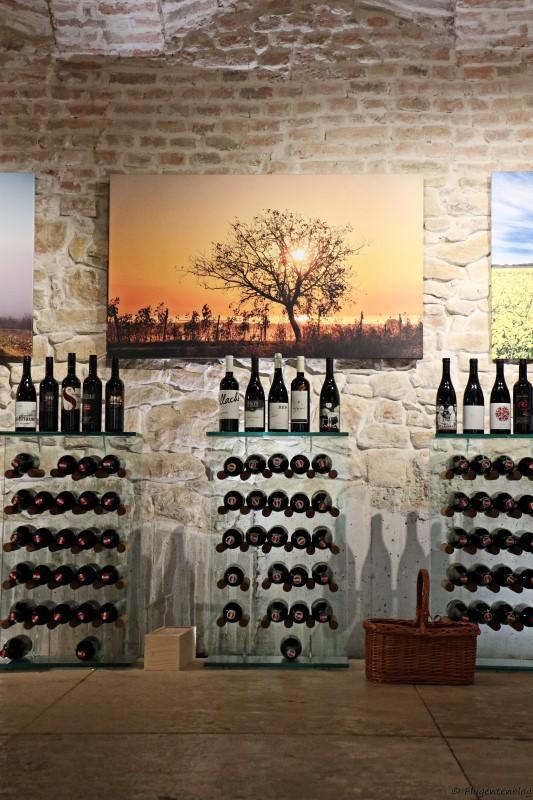 Burgenland Weinkulturhaus Gols
