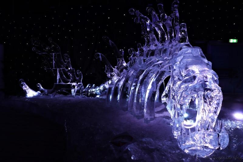 Fischgerippe aus Eis