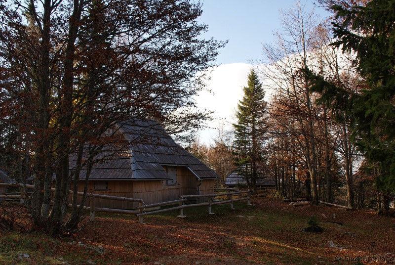 Huette im Wald auf Velika Planina