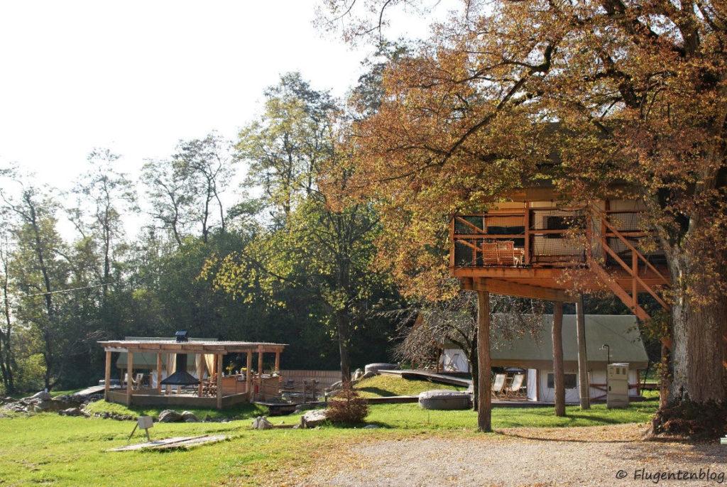 links die Bar, rechts steht das Baumhaus