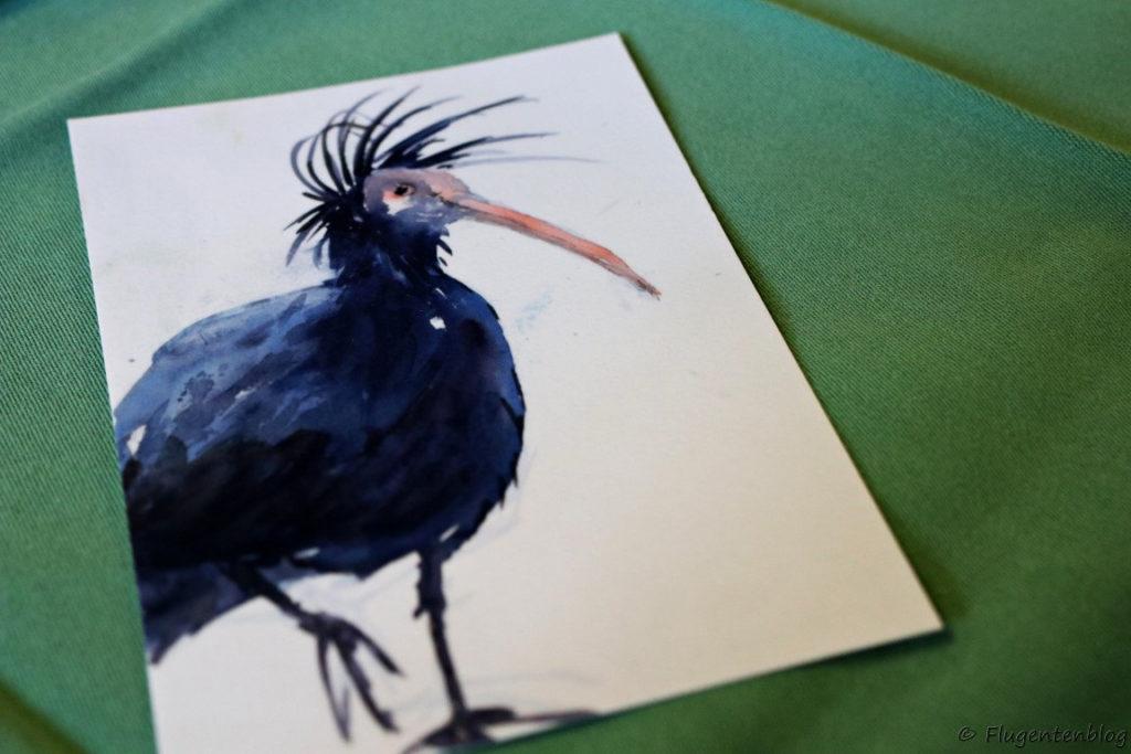 Zeichnung eines Waldrappen, schwarzes Gefieder, langer duenner Schnabel, lange hochstehende Stirnfransen