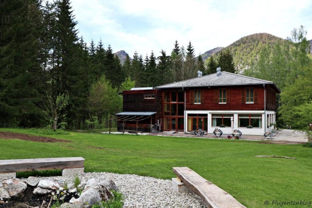 Haus teilweise mit dunklem Holz verkleidet und verglastem Stiegenhaus steht direkt am Waldesrand