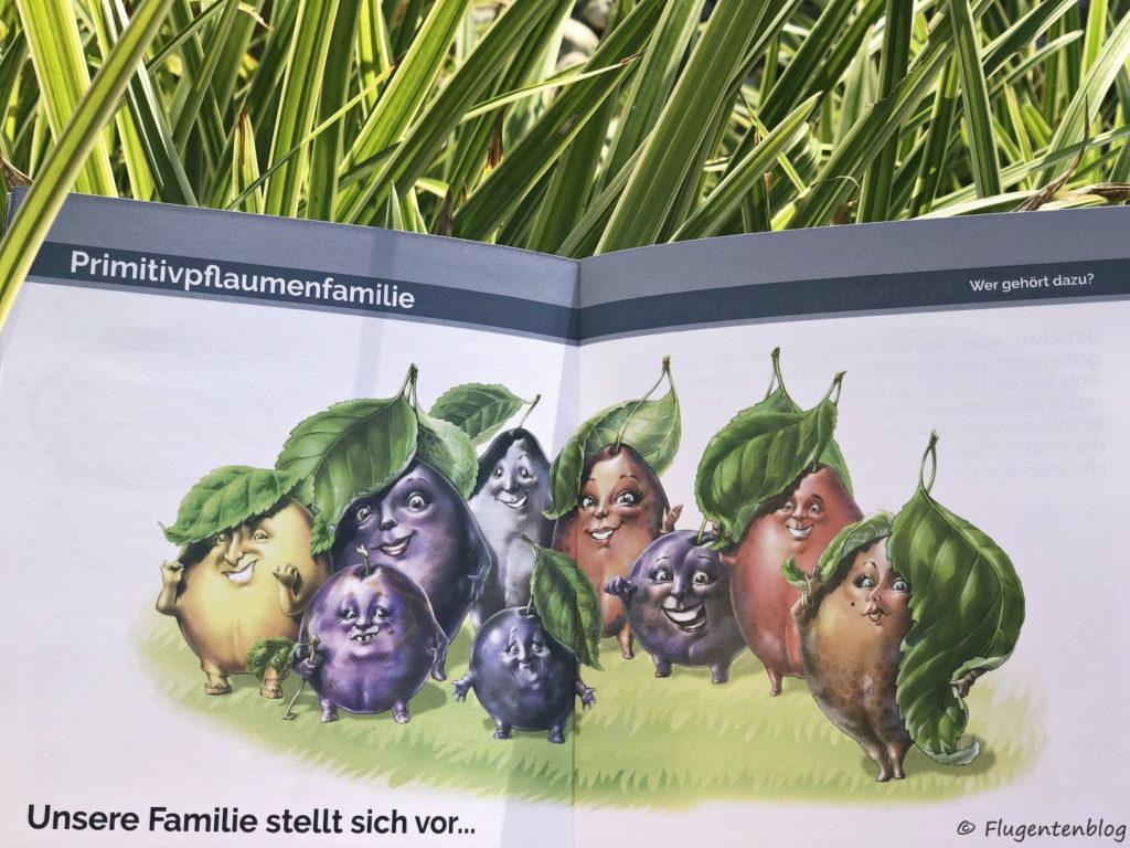Zeichnung der Mitglieder der Familie der Urzwetschken