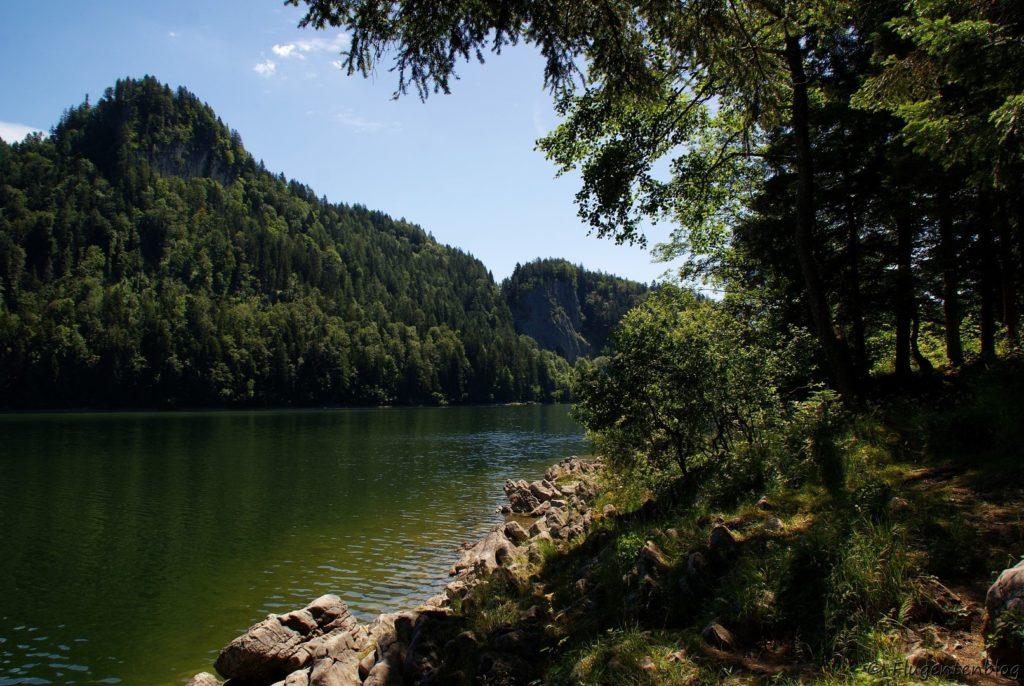 Salzkammergut Wandern Schwarzensee Rundweg